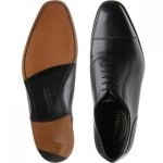 Westminster Oxfords
