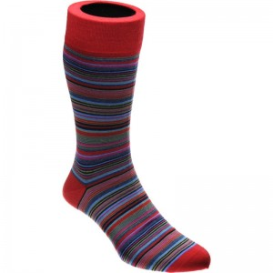 herring baloo sock in bright