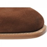 Ickford double monk shoes