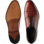 Evans Oxfords